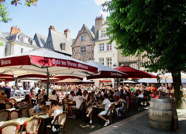 Vieux-murier-Tours-place-Plumereau